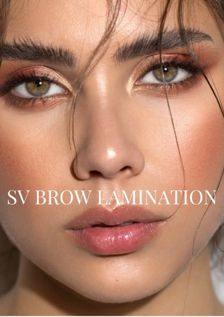 Sara Victoria Brow Education Courses Brow Lamination